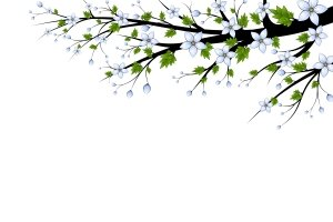 Blue Flowers Branch